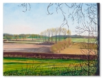 Winter Afternoon Botolph Claydon by Catherine Winget - oil on canvas oil painting landscape art countryside England North Bucks winter light