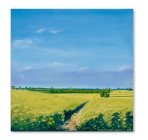 Oilseed Rape at Hillesden l Catherine Winget oil on canvas landscape painting art artist oil painting North Bucks